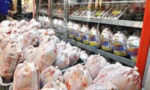 解决分布广泛的鸡肉市场危机/德黑兰市场每天需要多少鸡肉市场?